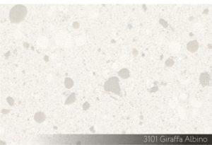 3101 Giraffa Albino